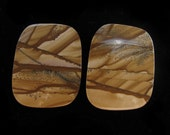 Kalahari Picture Rock cabochon pair 0375