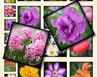 Flowers 1x1 & 2x2 Squares,  (Set of 24 on 8.5x11 Digital Collage Sheet ) Multicolored, Inchie, Twinchie, Printable, INSTANT DOWNLOAD