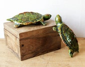 Two Turtles Tortoise figurines Pair ornaments Couple males and female - naughty surprise green