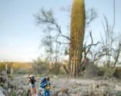 Desert Hike (8x12)