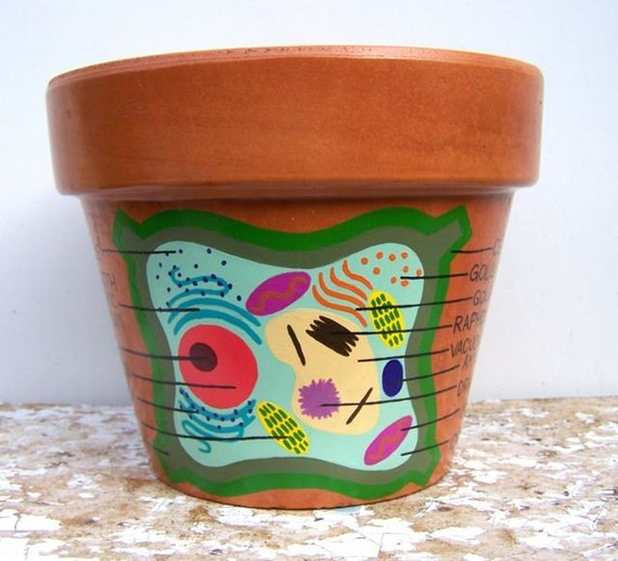 PLANT CELL DIAGRAM hand painted flower pot 5.5 inches high