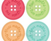 BeLLe'S BuTtONs - Buttons - Baby Monthly Onesie Stickers