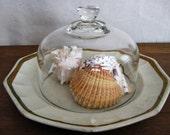 Plate & Cloche/Dome 1800's Edward Walley