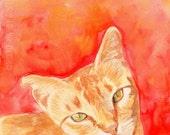 Orange Tabby Cat Fine Art Watercolor Print - 5x7