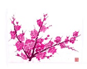 Plum Blossom-Pink 3 - Set of 5 Notecards
