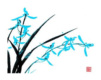 Orchid-Black and Light Blue