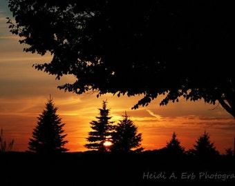 Sunset photography, Sunset landscape, photography print, Home decor, Sunset decor, Photo print, trees, nature, Landscape photography