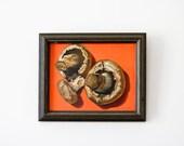 Pop Art Mushroom Painting with Bright Orange Background, Vintage Original Still Life