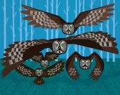 iOTA iLLUSTRATION - Five Owls In Flight - Limited Edition Animal Art Print