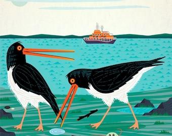 The Oystercatchers - Animal Art illustration - Limited Edition Print - iOTA