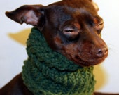 Green Knitted Small Dog Snood
