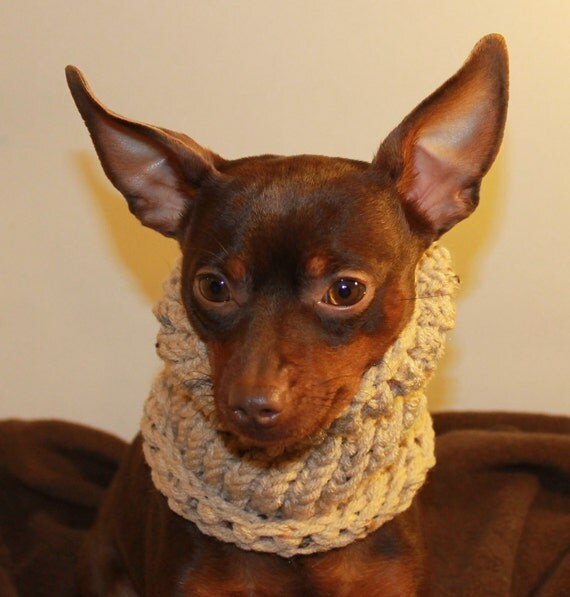 Dog Snood Knitted Tan