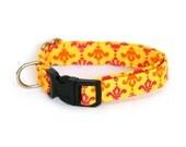 Dog Collar - Yellow and Pink Damask - Small