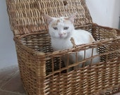 French Vintage Wicker Pet Carrier