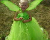 Disney's Inspired TINKERBELL Tutu Dress Up Costume