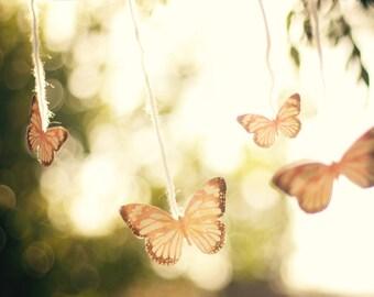 Fly Away - Fine Art Photograph, Butterflies, Butterfly, Yarn, Golden Light, Sun, Dreamlike