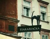 Eastern Europe Photography Creepy Cat Sign, Ljubljana, Slovenia - Home Decor