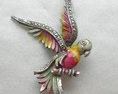 Art Deco Enamel Brooch, Parakeet, Marcasite set