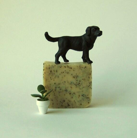Peppermint Poppyseed - Vegan Cold Process Soap