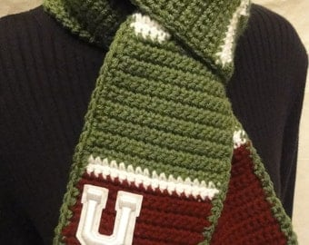 Football field scarf--YOUR school YOUR colors
