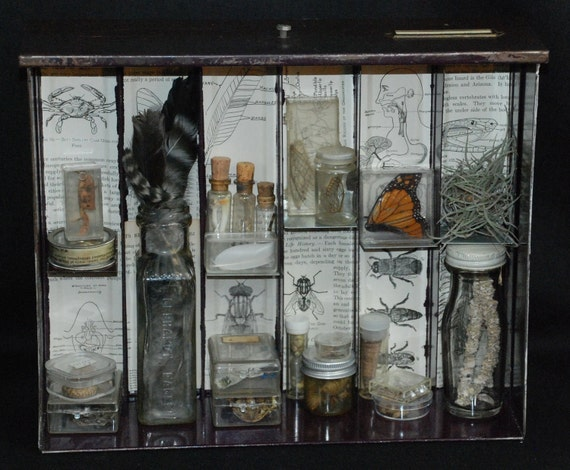 RESERVED Listing for Denise Apothecary Mixed Media Shadowbox Assemblage IV