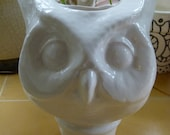 Large Owl Planter in Glossy White