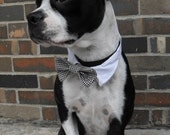 Shirt Collar and Bow Tie - Houndstooth