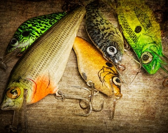 Dad's Fishing Crank baits No.0070 A Still Life Photograph of Artificial Bait Fishing Lure Plugs