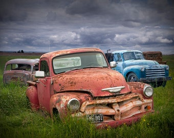 Old Vintage Car Bodies in an Automobile Junk Yard A Fine Art Landscape Photograph