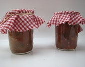 Homemade Salsa--Made from Naturally, Homegrown Vegetables--Great Gift Idea--