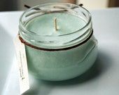 Cool Citrus Basil Soy Candle - 11 Ounce Tureen Jar
