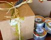 Gift Box seasonings and flavor extravaganza by Artisanal Spice