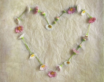 Love Blossoms - Photography Photograph - Love Flower Heart, Sweet Romantic - Valentines Day - Pink Taupe Nursery Decor - Girls Room