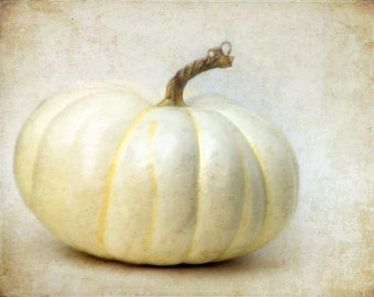 White Pumpkin - Fall Autumn Photograph - Halloween Photography - Neutral - September, October, November - Kitchen Decor - Thanksgiving