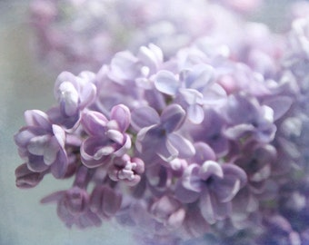 Lilac I  - Photograph Photography - Spring Wedding Flower - Shabby Chic - Romantic Pastel Purple Lilacs Garden Mothers Day