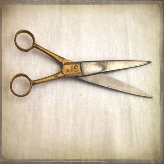 The Collection  Number VII - Photography Photograph Photo - Scissors - Sewing Room Decor - Gift Wrappping - Trim Cut Snip Shears Crafty