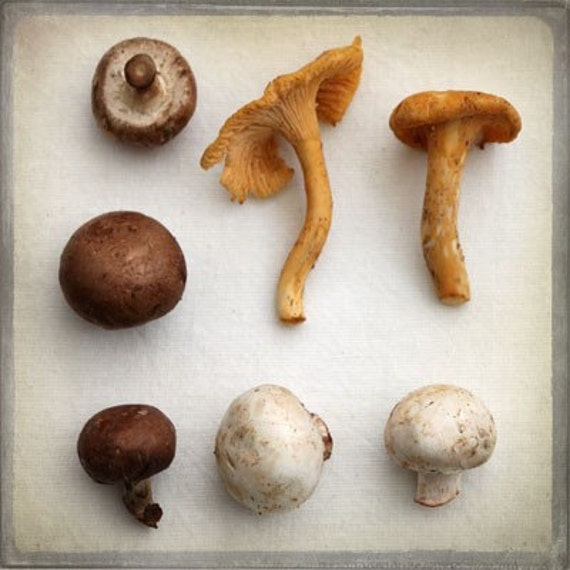 The Collection Number XII - Food Photography - Kitchen Art - Mushrooms - Beige Tan Brown Golden Gourmet Decor Holiday Country Kitchen