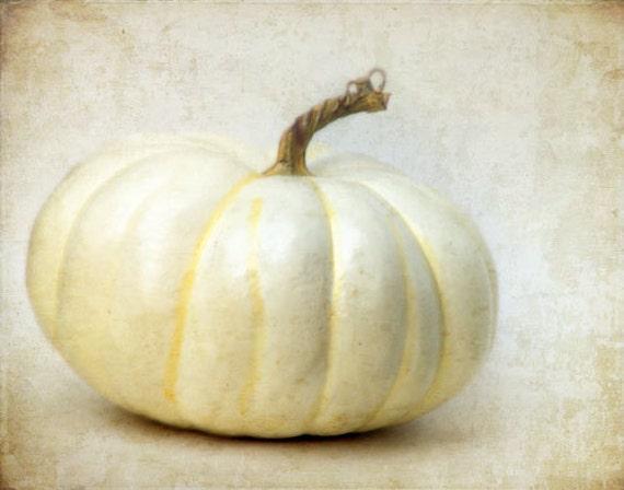 White Pumpkin - Fall Autumn Photograph - Halloween Photography - Neutral - September, October, November - Kitchen Decor - Thanksgiving