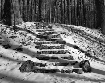Snow-Covered Stone Staircase
