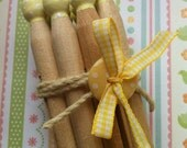 Summer Dolly Pegs
