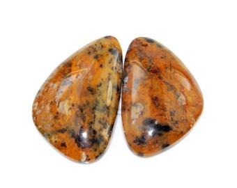 2 Pcs Rare Kalkaadoo Leopard Skin Jasper pendant bead J21B166520