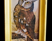 Vintage Upcycled Owl Photo in Yellow Frame