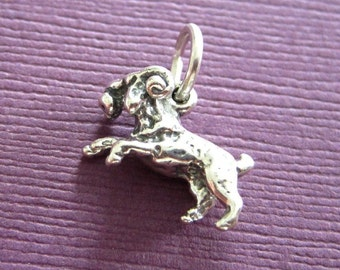 Sterling Silver Aries  Zodiac  Sign Charm