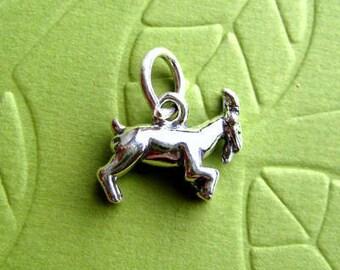 Sterling Silver   Zodiac  Capricorn  Sign Charm