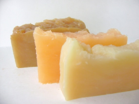 Solid Shampoo Three Pack, Pick Your Favorites
