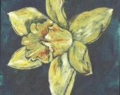 Daffodil 2 Flower Original Acrylic Painting on Box Canvas