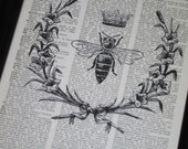 BOGO SALE Bee Upcycled Art Queen Bee Print on Vintage Dictionary Book Page 8 x 10