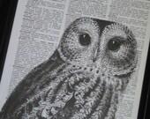 BOGO SALE Owl Print Owl Art Print Owl Decor Owl Head Dictionary Book Page Print 8 x 10 Black