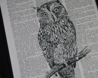 Dictionary Art Print Upcycled Art Stunning Owl on a Vintage Dictionary Page