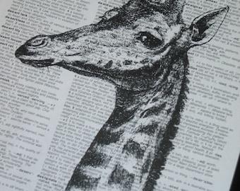 BOGO SALE GIRAFFE Art Print on a Vintage Dictionary Page Print 8 x 10 Giraffe Print Wall Decor